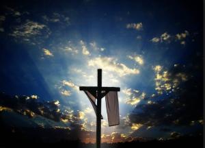 Cross 11